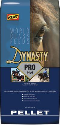 Dynasty Pro Pellet front