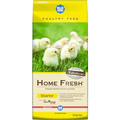 Kent Feed Home Fresh Multi Flock Starter 50#